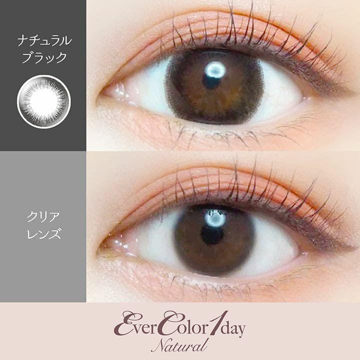 【カラコン 度なし】Ever Color 1day Natural(エバーカラーワンデー ナチュラル) OEO 着色径14.5mm 1日使い捨て 1箱20枚入り(度なし)(シャンパンブラウン/ナチュラルブラック/ナチュラルブラウン)